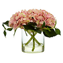 Buy John Lewis Hydrangea Cylinder, Multi Online at johnlewis.com