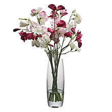 Buy John Lewis Ranuculus And Sweetpea In Vase, Multi Online at johnlewis.com