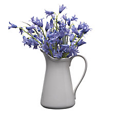 Buy John Lewis Bluebells In Jug, White Online at johnlewis.com