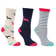 Buy John Lewis Sausage Dog Stripe Cotton Mix Ankle Socks, Multi, Pack of 3 Online at johnlewis.com