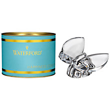 Buy Waterford Butterfly Collectible, Clear Online at johnlewis.com