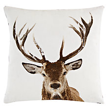 Buy John Lewis Stag Head Cushion Online at johnlewis.com