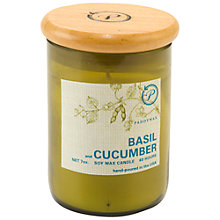 Buy Paddywax Ecogreen Basil And Cucumber Scented Candle Online at johnlewis.com
