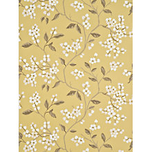 Buy GP & J Baker Apple Blossom Wallpaper Online at johnlewis.com