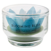 Buy Blooming Bliss Glass Votive, Assorted Online at johnlewis.com