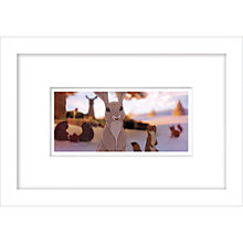 Buy John Lewis Bear & Hare Still 2 Framed Digital Print, 23 x 33cm Online at johnlewis.com