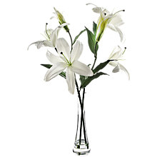 Buy Peony Lily Vase, White, Large Online at johnlewis.com