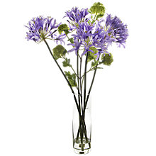 Buy Peony Viburnum and Agapanthus In Vase, Multi Online at johnlewis.com