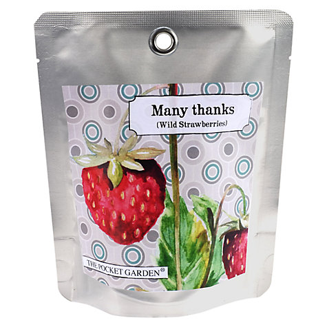 Buy The Pocket Garden Many Thanks Strawberry Seeds Online at johnlewis.com