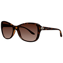 Buy Bvlgari BV8127B 977/13 Rectangular Sunglasses, Havana Online at johnlewis.com