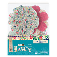 Buy Docrafts Sew Lovely Big Bloomers Flower Appliques, 32pcs Online at johnlewis.com
