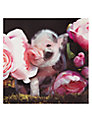 Paperhouse Piglet in Roses Mother's Day Card