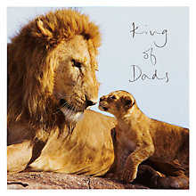 Buy Woodmansterne Lion With Cub Father's Day Card Online at johnlewis.com