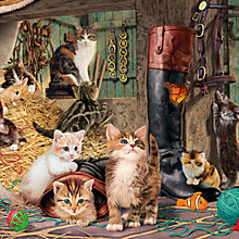 Buy Gibson & Son Kitten Capers 1000 Piece Puzzle Online at johnlewis.com