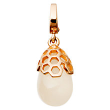 Buy Astley Clarke Charms 18ct Rose Gold Vermeil Moonstone Honeycomb Aphrodisiac Charm Online at johnlewis.com