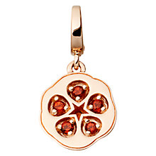 Buy Astley Clarke Charms 18ct Rose Gold Vermeil Garnet Quince Aphrodisiac Charm Online at johnlewis.com