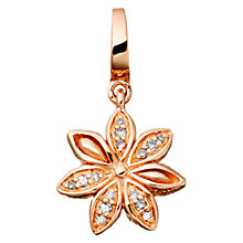 Buy Astley Clarke Charms 18ct Rose Gold Vermeil Star Anise Charm Online at johnlewis.com