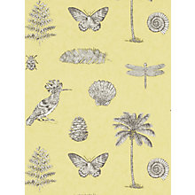 Buy Sanderson Cocos Wallpaper Online at johnlewis.com