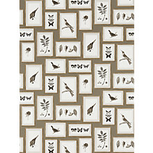 Buy Sanderson Picture Gallery Wallpaper Online at johnlewis.com