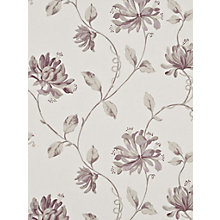 Buy GP & J Baker Honeysuckle Paste the Wall Wallpaper Online at johnlewis.com