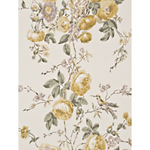 Buy GP & J Baker Roses & Hummingbird Paste the Wall Wallpaper Online at johnlewis.com