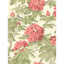Buy Cole & Son Bourlie Paste the Wall Wallpaper Online at johnlewis.com