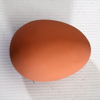 Bouncy Egg Jet Ball