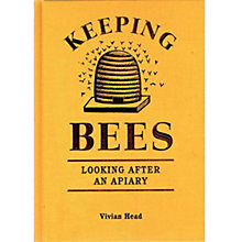 Buy Keeping Bees Book Online at johnlewis.com