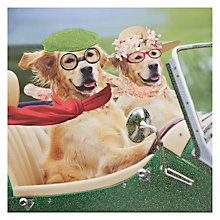 Buy Card Mix Dogs In Convertible Greeting Card Online at johnlewis.com