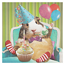 Buy Card Mix Hamster With Cupcake Greeting Card Online at johnlewis.com