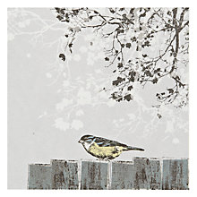 Buy The Art Rooms Bird On Fence Greeting Card Online at johnlewis.com