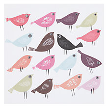 Buy Art Press Sixteen Colourful Birds Greeting Cards Online at johnlewis.com