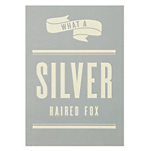 Buy Art File A Silver Haired Fox Birthday Card Online at johnlewis.com
