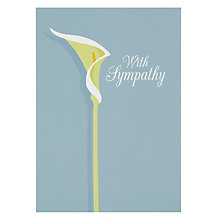 Buy Art File Lily Sympathy Card Online at johnlewis.com