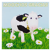 Buy Mint Moochos Gracias Thank You Card Online at johnlewis.com