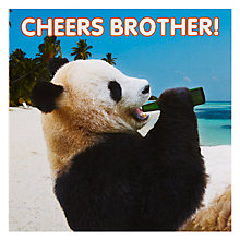 Buy Mint Brother Panda Birthday Card Online at johnlewis.com