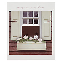 Buy Woodmansterne Westie in the Windows Mum Birthday Card Online at johnlewis.com