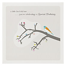 Buy The Art Rooms Little Bird Special Birthday Card Online at johnlewis.com