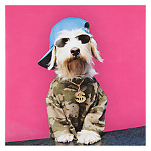 Buy Icon Rude Dog Greeting Card Online at johnlewis.com