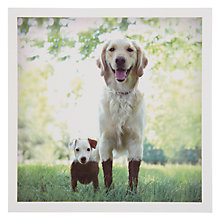 Buy Woodmansterne Big Dog Little Dog Card Online at johnlewis.com