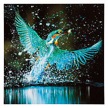 Buy Woodmansterne Kingfisher Splash Greeting Card Online at johnlewis.com