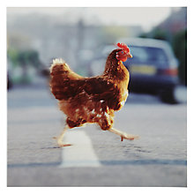 Buy Woodmansterne Chicken Cross The Road Greeting Card Online at johnlewis.com