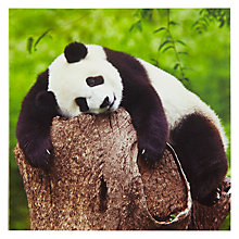 Buy Woodmansterne Panda Hugging Greeting Card Online at johnlewis.com