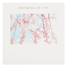 Buy Susan O'Hanlon Pink Blossom Thinking of You Card Online at johnlewis.com