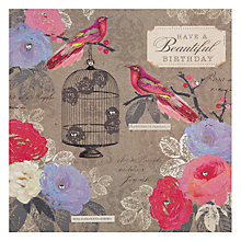 Buy Hammond Gower Birds & Cage Birthday Card Online at johnlewis.com