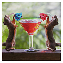 Buy Woodmansterne Squirrel Sipping Cocktail Birthday Card Online at johnlewis.com