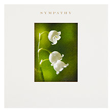 Buy Susan O'Hanlon Lily of the Valley Sympathy Card Online at johnlewis.com