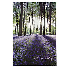 Buy Wodmansterne Bluebell Field Trees Sympathy Card Online at johnlewis.com