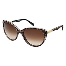 Buy Dolce & Gabbana DG 4175 Cat's Eye Sungalsses, Tortoiseshell Online at johnlewis.com