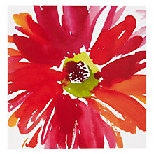 Buy Paper Rose Rainbow Gerbera Birthday Card Online at johnlewis.com